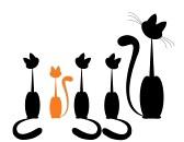Chats à parrainer