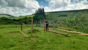 starting new sheep shelter