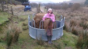 Nicole with haylage