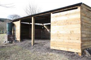 lambing shed