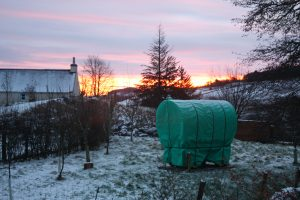 auchenstroan winter morning