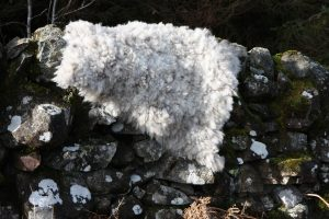 hand made felted fleece rug
