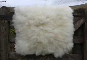 felted fleece rug Mandy