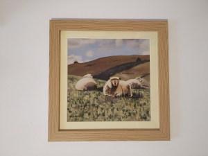 Sheep Paintings - Yogi & friends framed