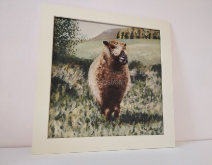 sheep picture - mounted print - Ynca