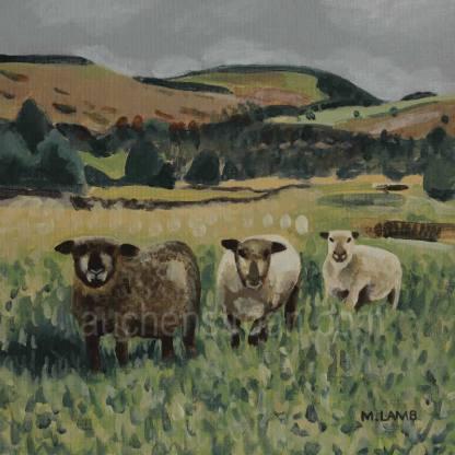 acrylic painting - sheep - Yin Yarr & Yogi