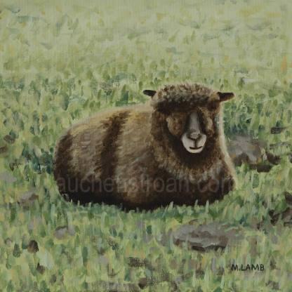 original acrylic painting - coloured ryeland sheep - Yoko