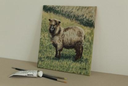 original acrylic painting - sheep - Yggy - coloured ryeland
