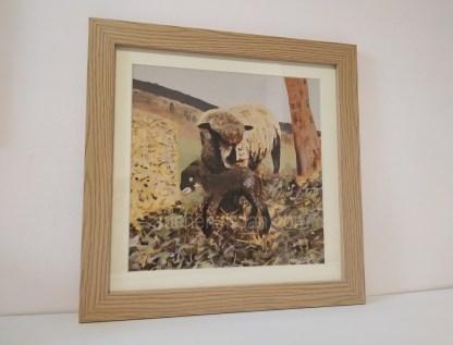 sheep framed print - Witchy & Yogi lamb