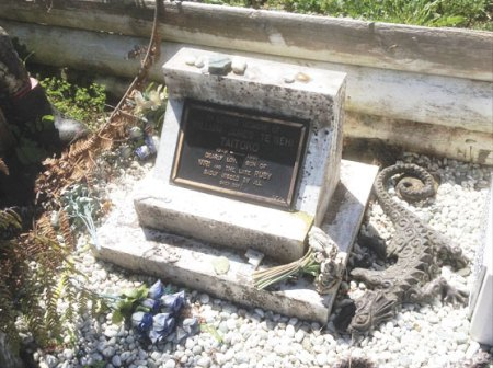 Taupiri Mountain Waikato Billy T James Grave Picture