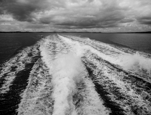 Waiheke Island Passage - Landscape Photography - Black & White