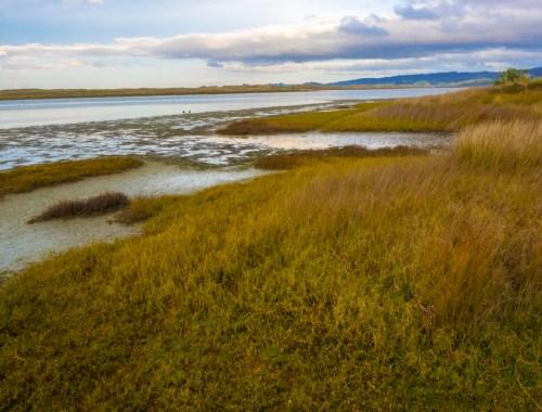 Waipu Cove - Landscape Photography - Auckland