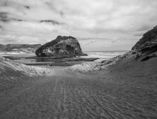 Bethells Beach View - Black & White - Landscape Photography
