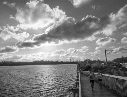 Orakei Basin - Black & White - Street Photography Auckland
