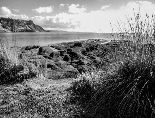 Goat Island Marine Reserve - Landscape Photography Auckland