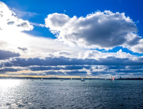 Auckland-Harbour-Sailing-Yachts