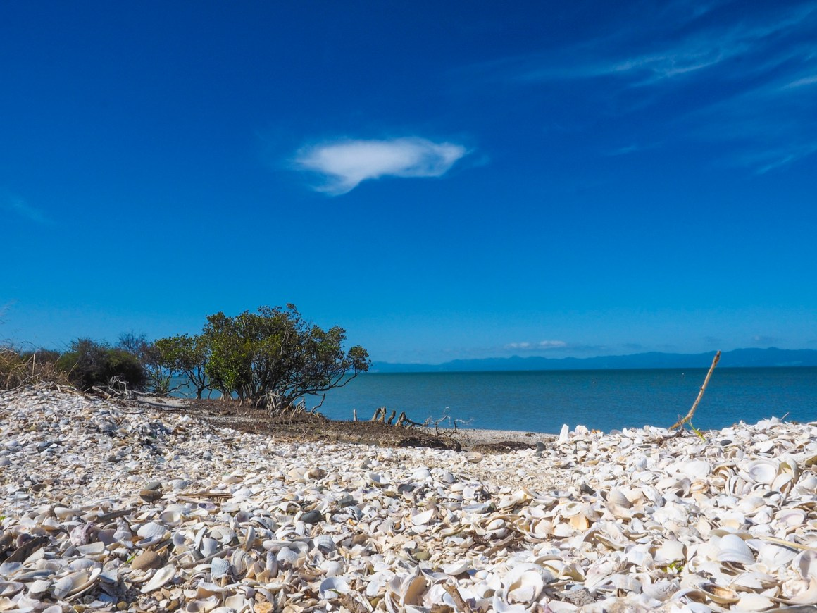 Firth of Thames - Landscape Photography Auckland