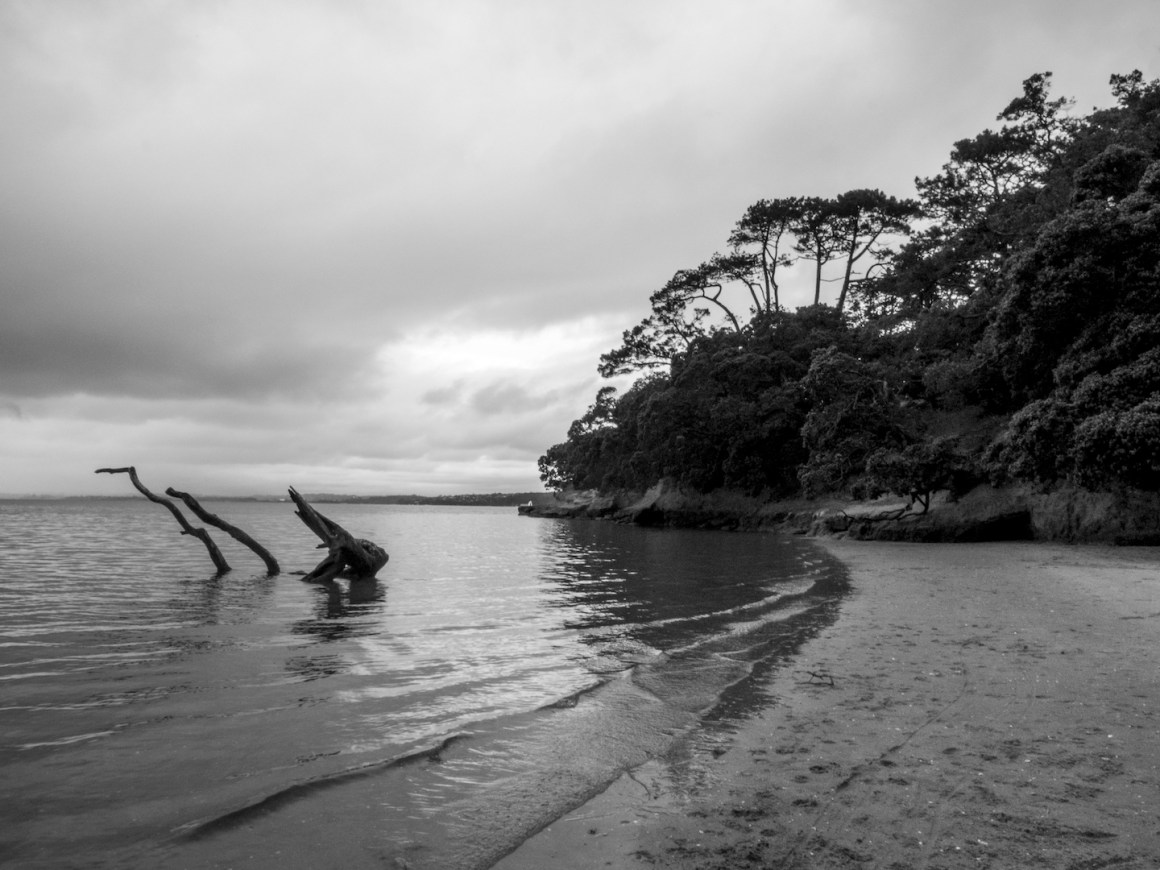 Pt Chevalier Beach - Landscape Photography Auckland