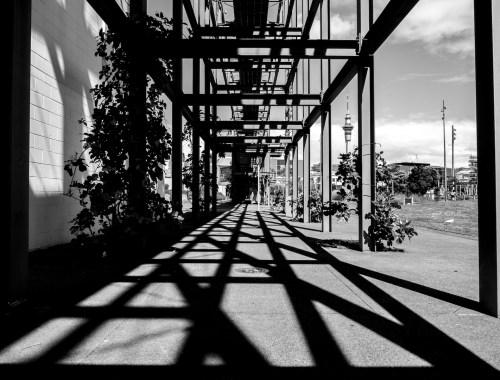 Silo Park Shadows - Wynyard Quarter Auckland