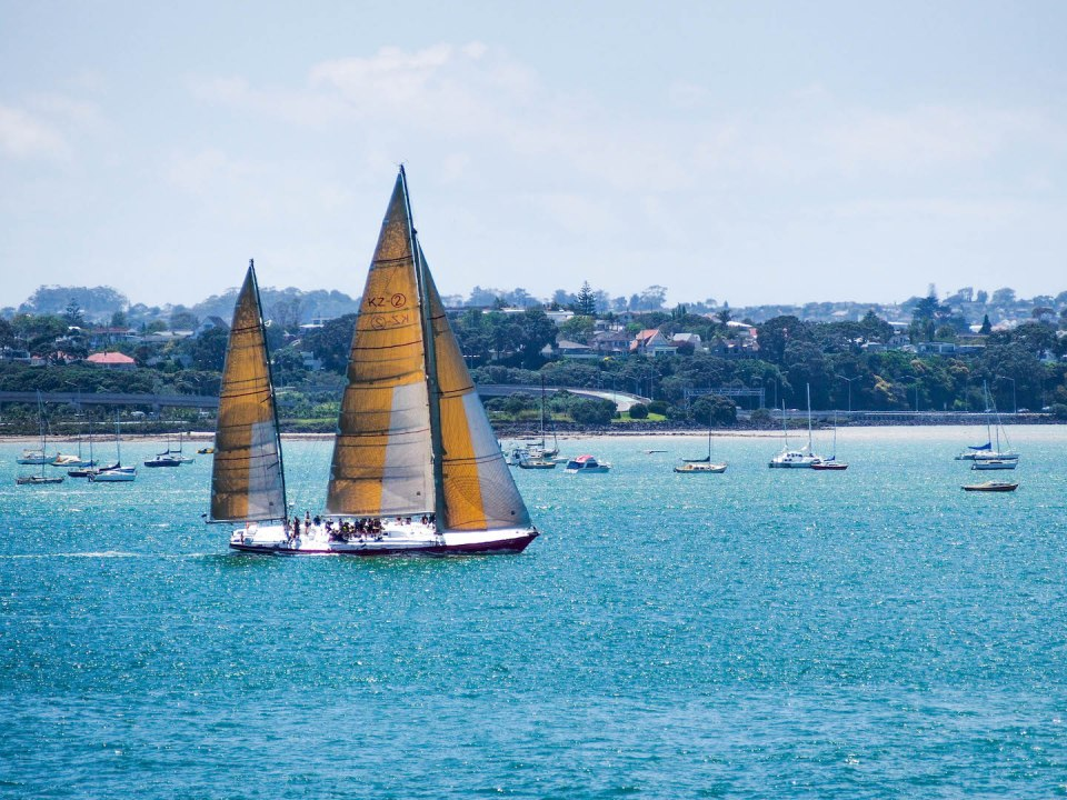 Shoal Bay Sailing - Auckland Street Photography