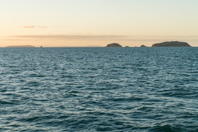 Sunset on the Sealink Ferry to Auckland from Aotea - Great Barrier Island