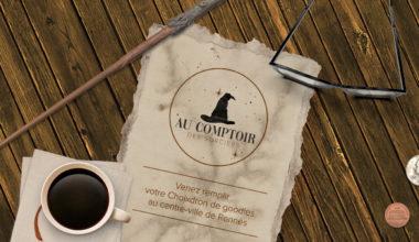 Bienvenue dans notre boutique Harry Potter à Rennes !