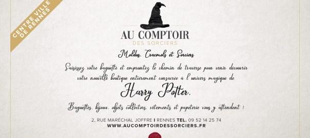 Un an déjà pour notre boutique Harry Potter à Rennes !