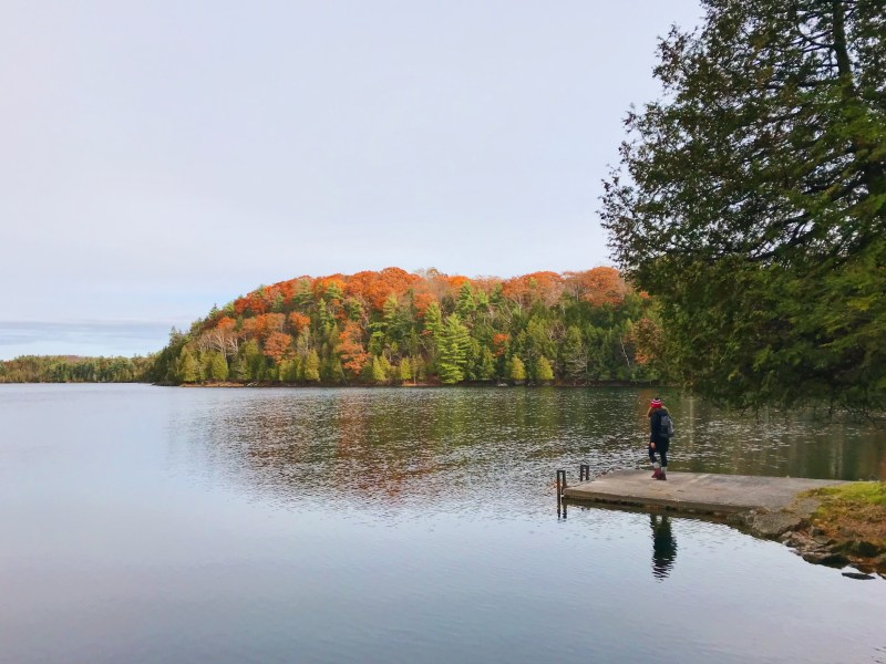 Lac Gould