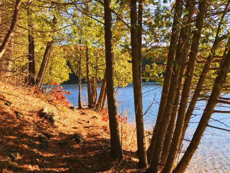 Gould Lake