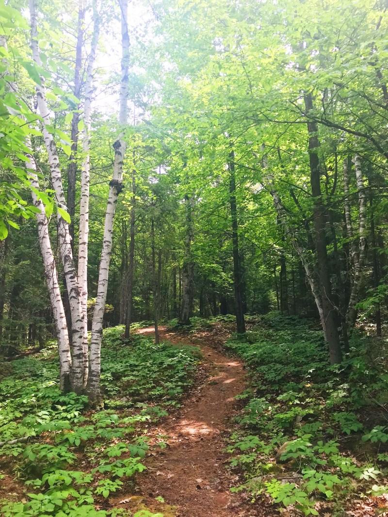 Chats Falls Trail