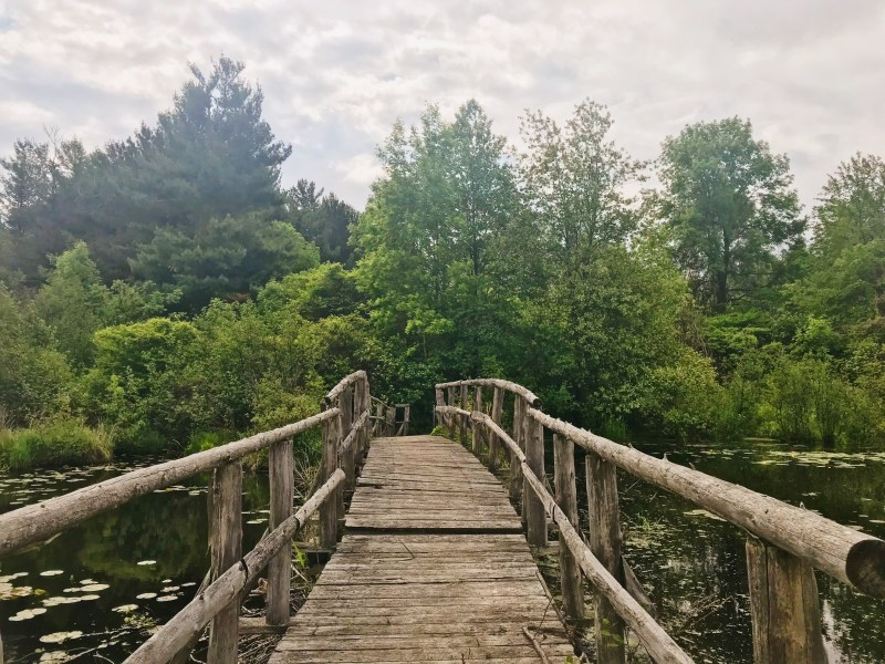 Charlottenburgh Park