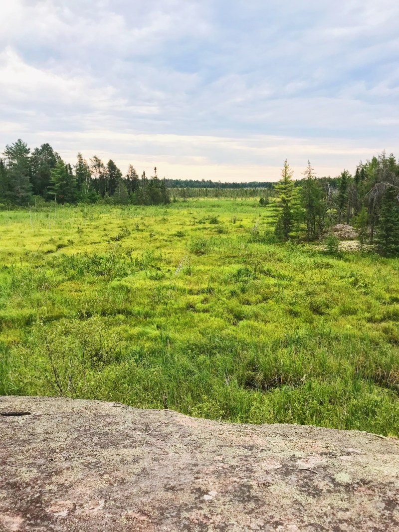 Parc provincial Mashkinonje