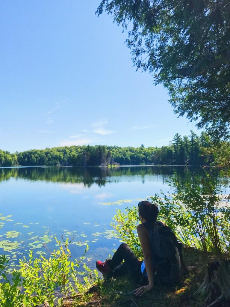 Aire de conservation Mill Pond