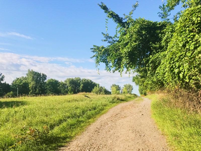 Sentier du refuge faunique Marguerite-D'Youville
