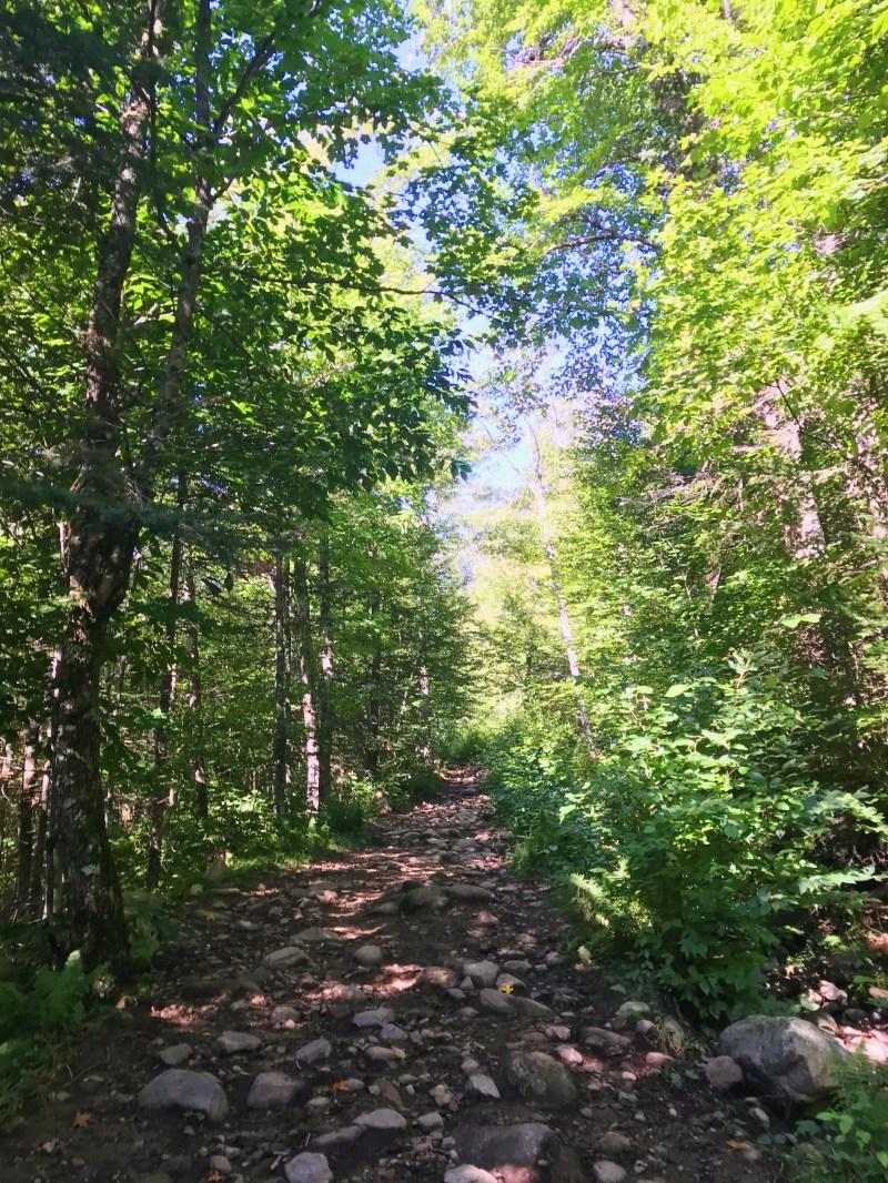 Inter-Centre Trail