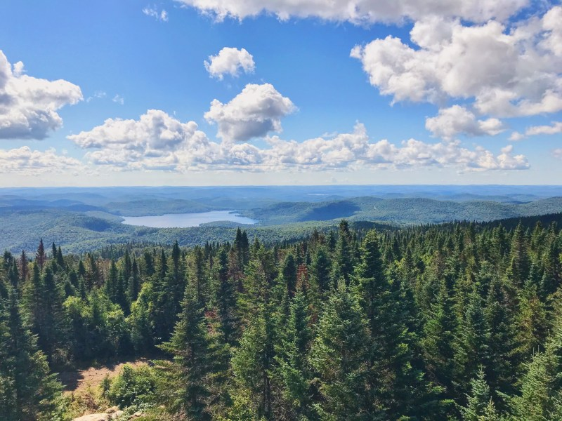 Vue du sommet de montagne Noire