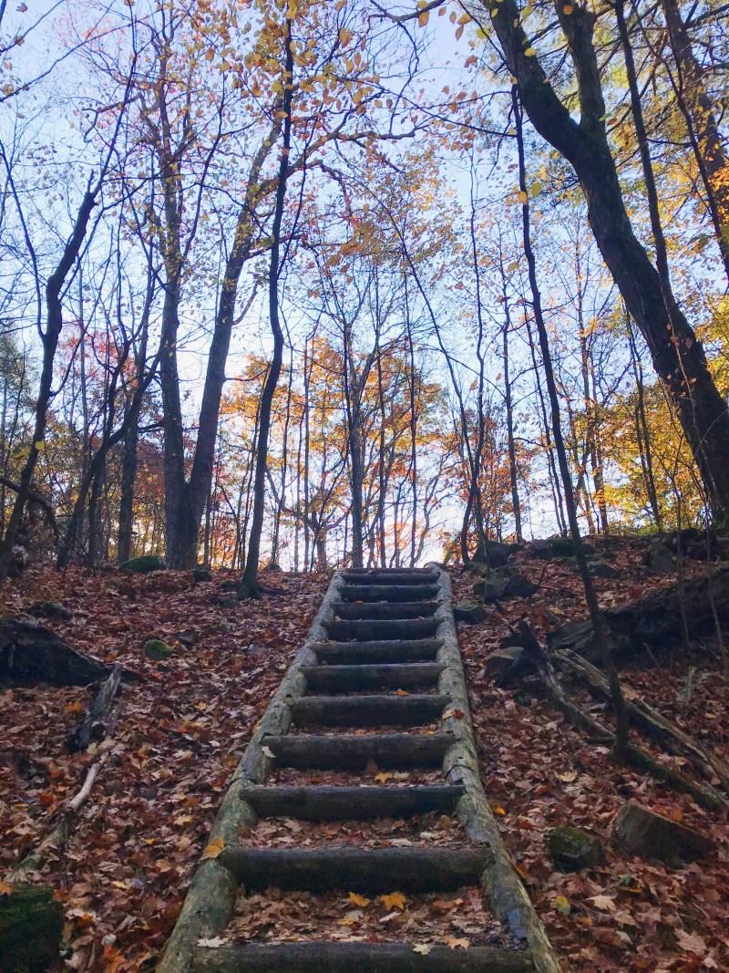 Escalier du sentier Lookout