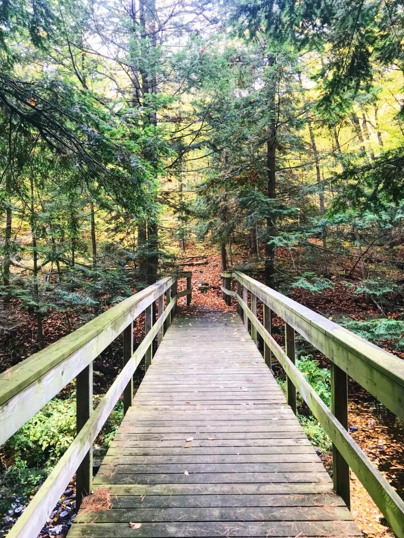 Footbridge at Meisel Woods