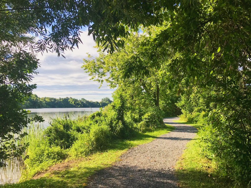 Chapman Mills Conservation Area along the Rideau River
