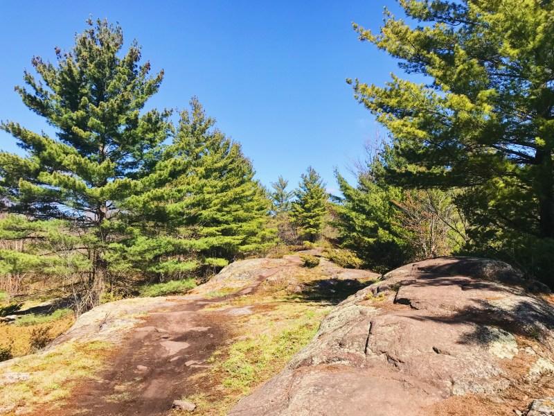 Carp Barrens Trail