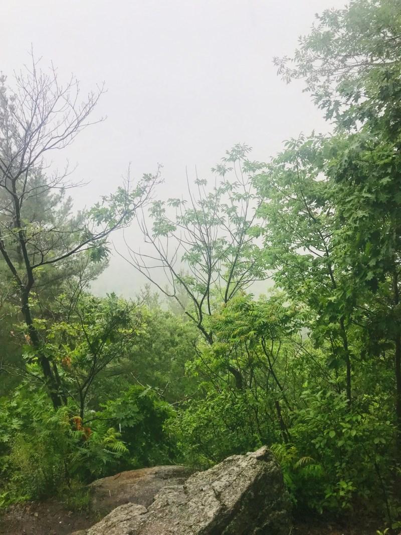 Au sommet des falaises de Prévost