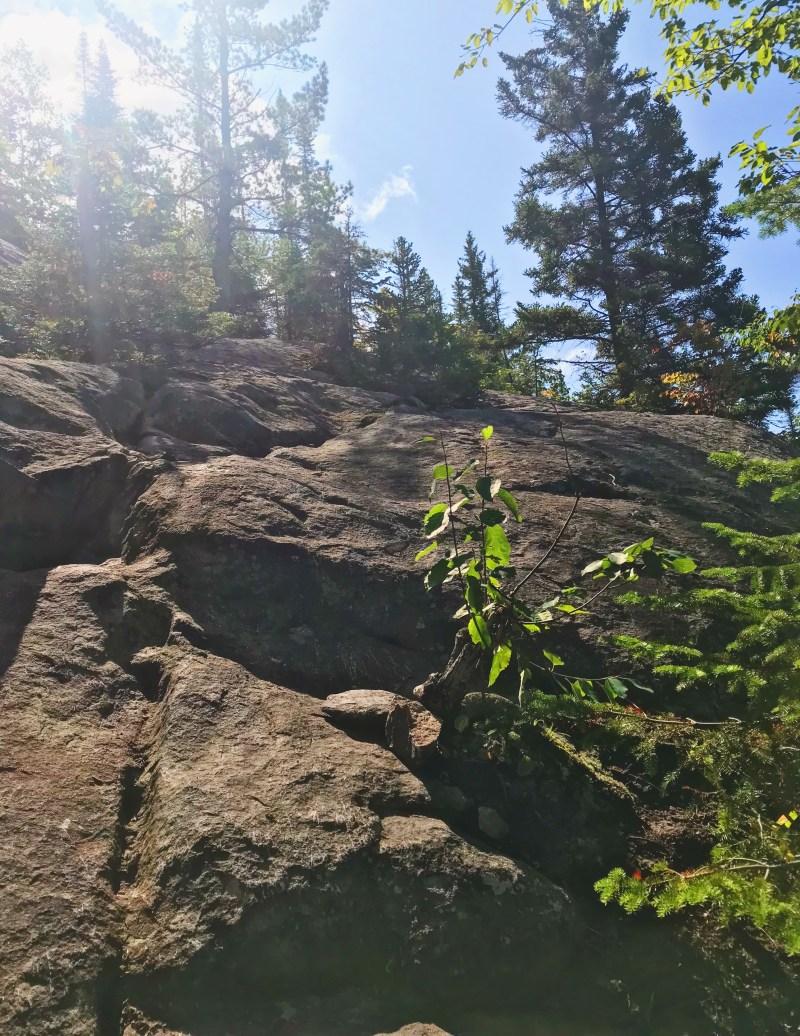 Nid de l'Aigle Trail