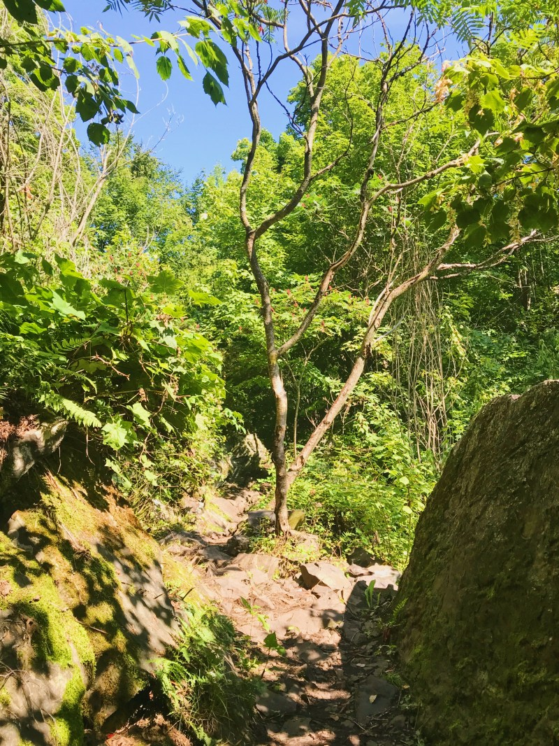 Jean-Baptiste Jodoin Trail in Rougemont