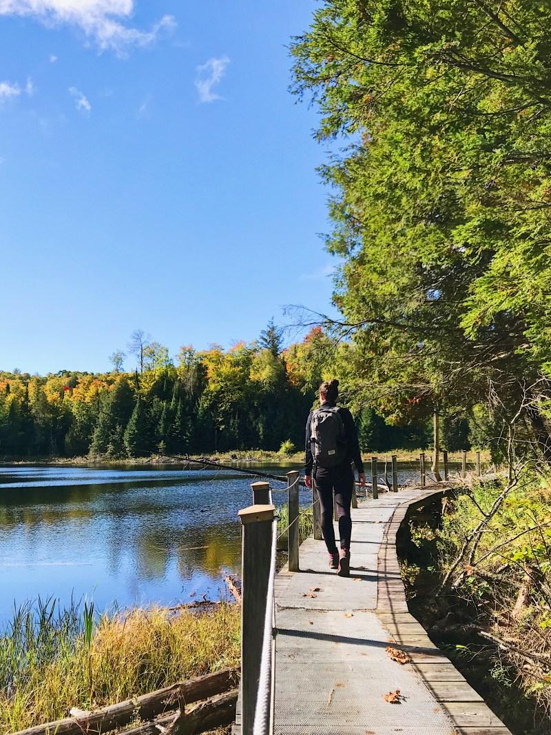 Lac aux Hérons in Forêt La Blanche