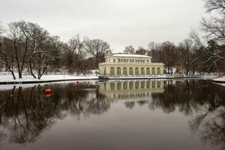 Winter nature photography photo