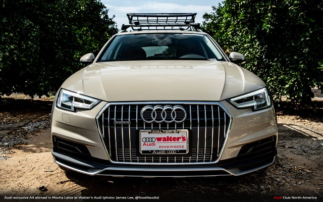 Audi exclusive Mocha Latte A4 allroad at Walter's Audi