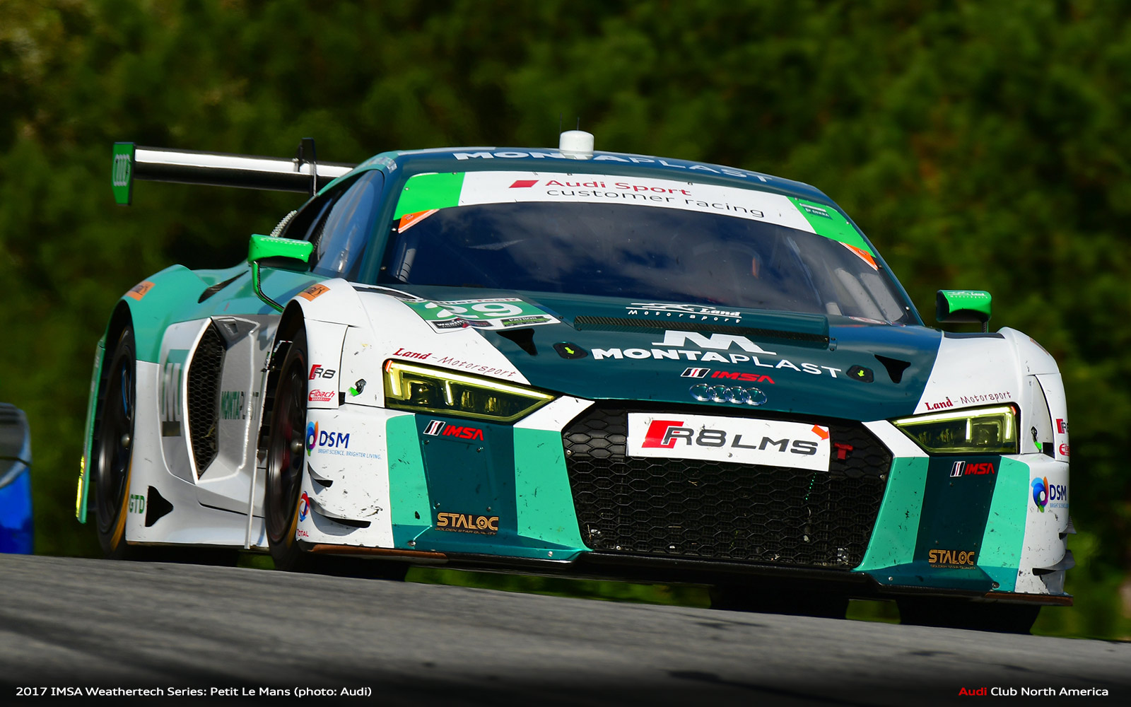 IMSA: Audi Wins Petit Le Mans