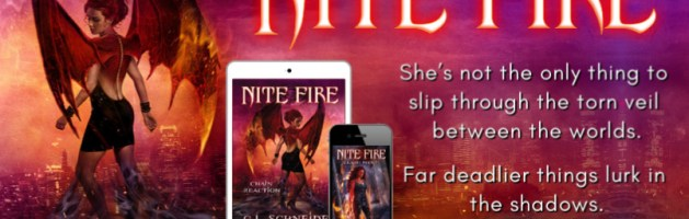 ⭐️ New Audio Blog Tour: Nite Fire by C.L. Schneider