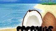 DJ Quin – Coconuts (Original)