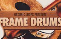 Frame Drums